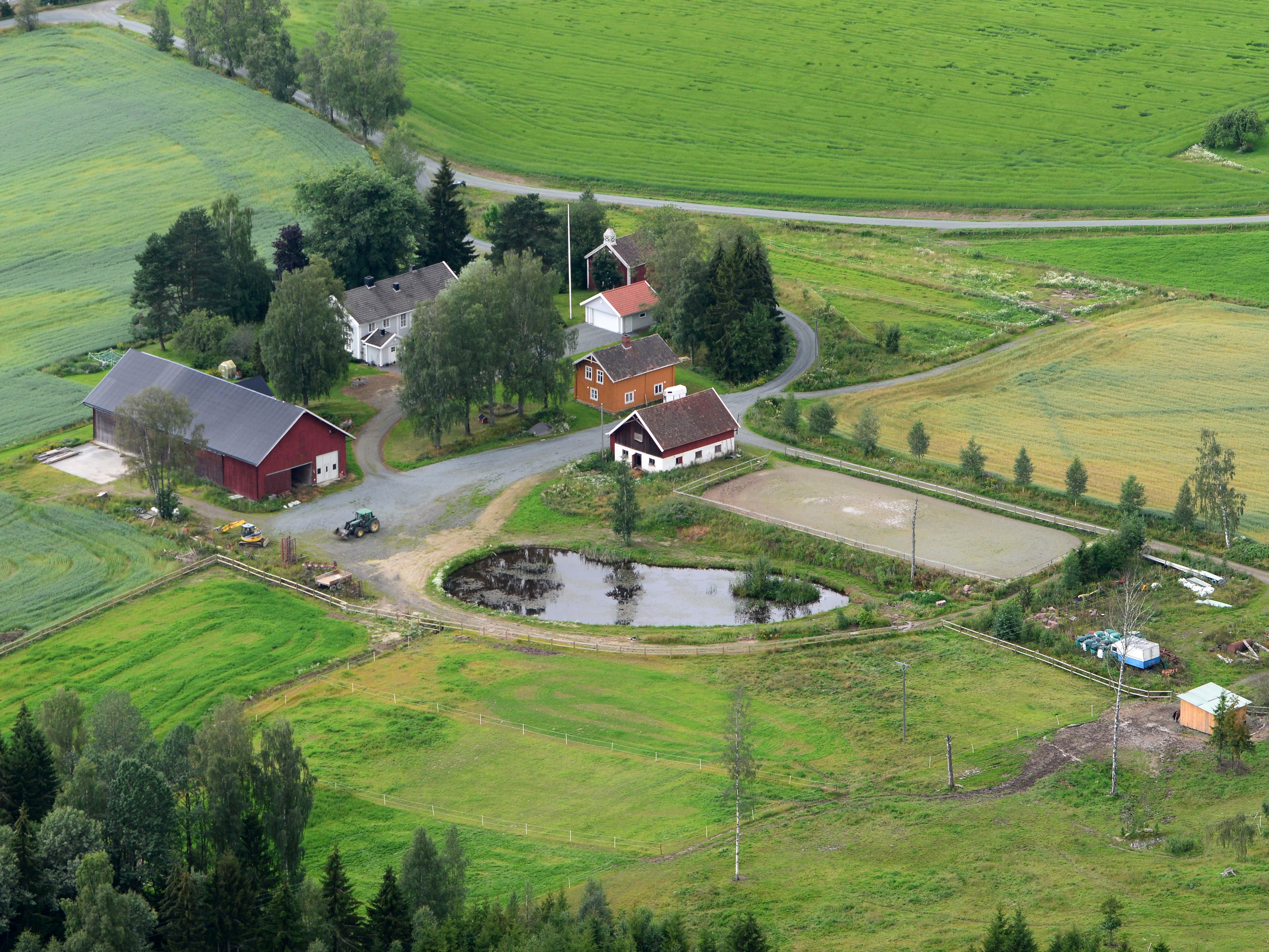 d7ab8c3e Et eksempel på tidlig bosetning i Kongsvingerdistriktet ...